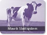 Mawik Slaktsystem